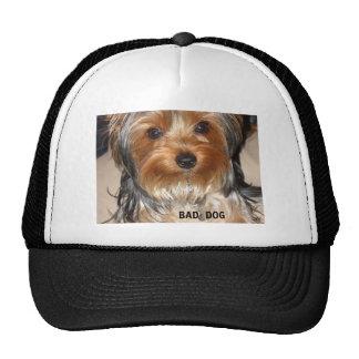 Mún perro gorros bordados