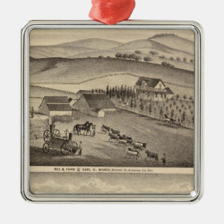 Munch, Stanley residences, farms Christmas Ornaments