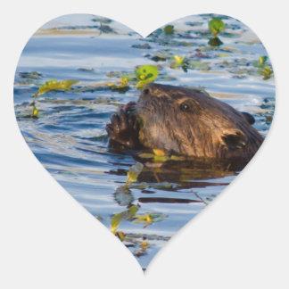 Munching Beaver collection Heart Sticker