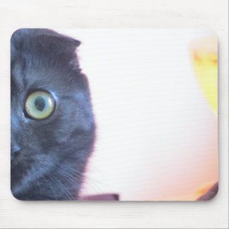 Munchkin Cat Mouse Pad