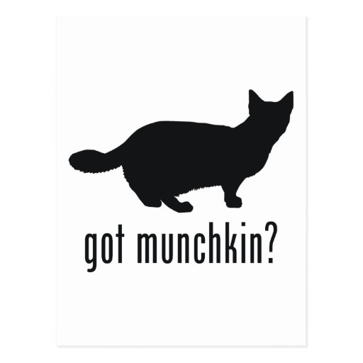 Munchkin Cat Post Cards