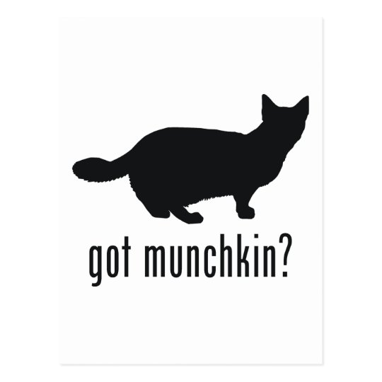 Munchkin Cat Postcard
