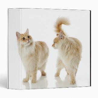 Munchkin cats binder