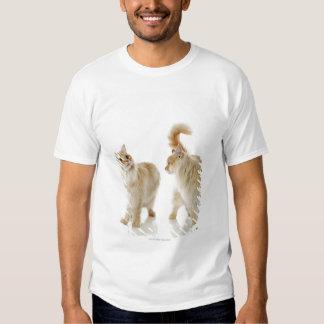 Munchkin cats t shirt
