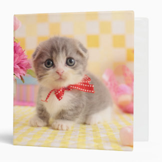 Munchkin Kitten 3 Ring Binder
