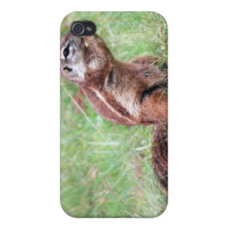 Munchkins Cases For iPhone 4