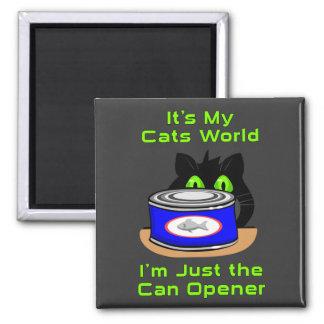Mundo de los gatos imán cuadrado