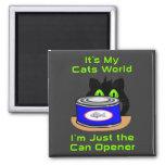 Mundo de los gatos imanes de nevera