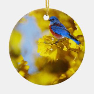 Mundo de un ornamento del Bluebird Adorno De Navidad