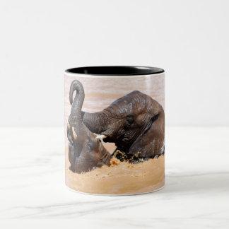 Mundo del agua de los elefantes tazas de café