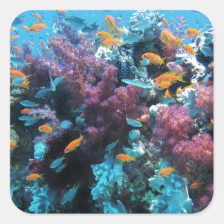 Mundo subacuático colorido hermoso pegatinas cuadradas