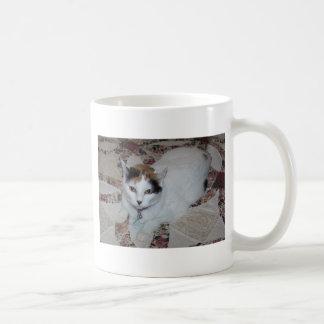Muñeca, el gato tazas de café