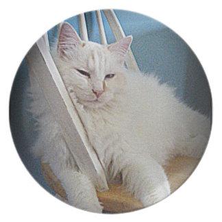 muñeca soñolienta de una placa del gatito plato de cena