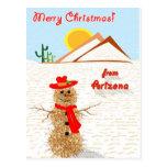 Muñeco de nieve del Tumbleweed de Arizona Tarjeta Postal