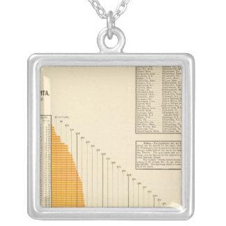 Municipal net debt silver plated necklace
