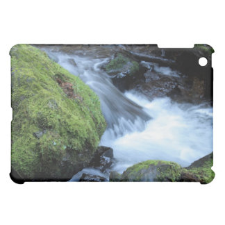 Munson Creek Speck iPad Case