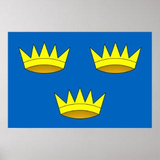 Munster, Ireland flag Poster