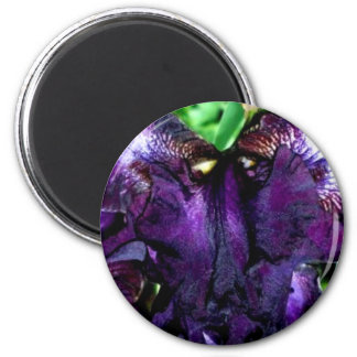 muppet face 2 inch round magnet