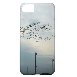 Murder of Crows iPhone 5C Case