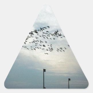 Murder of Crows Triangle Sticker