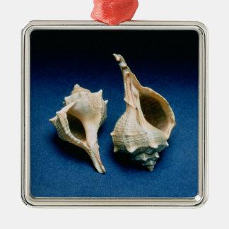Murex shell metal ornament