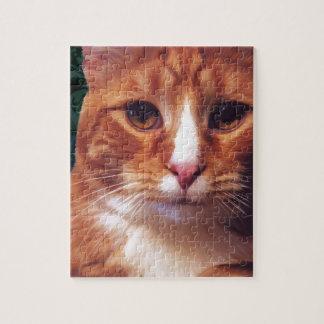 Murphy the Orange Tabby Cat Jigsaw Puzzles