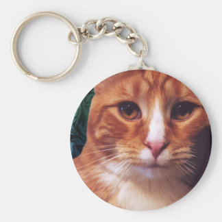Murphy the Orange Tabby Cat Keychains
