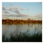 Murray River Summer Time Posters