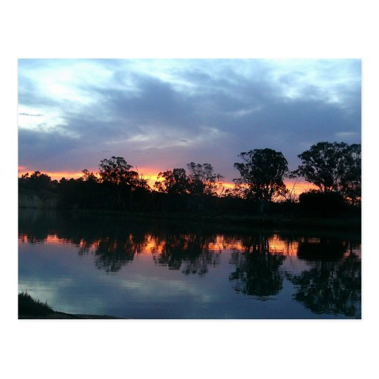 Murray River Sunset Postcard