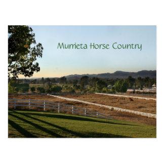 Murrieta Horse Country Postcard