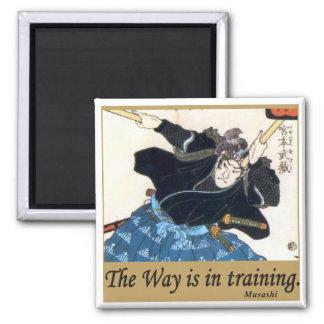 Musashi Magnet