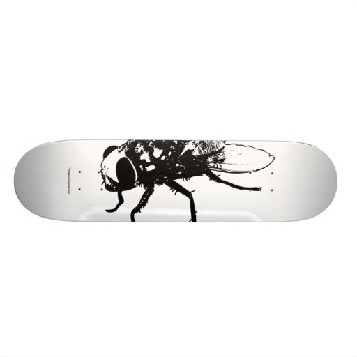 musca domestica skate skate board