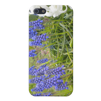 Muscari and Hyacinth Cover For iPhone SE/5/5s
