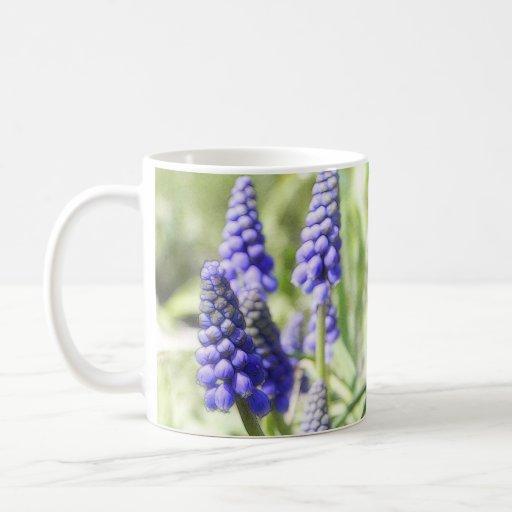 Muscari Flowers In The Spring Garden Coffee Mug