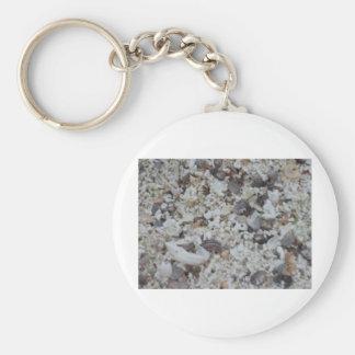 Muscheln von Strand Basic Round Button Keychain