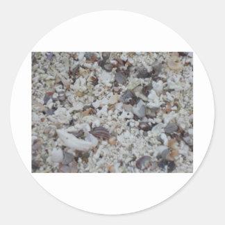 Muscheln von Strand Pegatina Redonda
