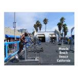 Muscle Beach Venice Postcard!