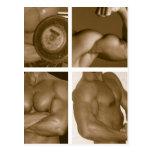 Muscle Flex: www.AriesArtist.com Post Card