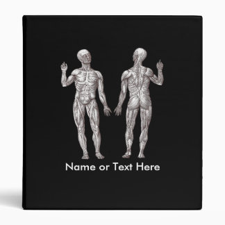 Muscle Men - Anatomy of the Human Muscular System 3 Ring Binder