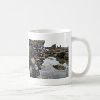 Muscles and Rocks on Newport Beach Mug