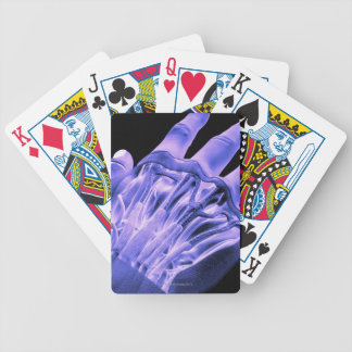Muscles of the Hand Bicycle Playing Cards