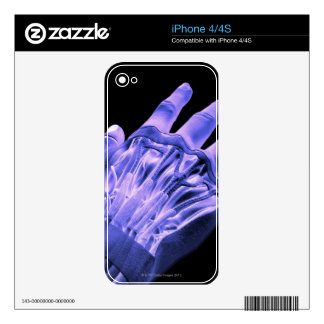 Muscles of the Hand Decal For iPhone 4
