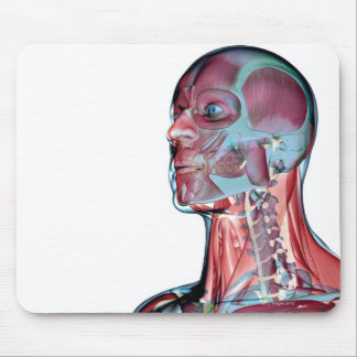 Muscles of the Head and Neck Mouse Pad
