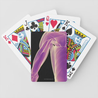 Muscles of the Shoulder 3 Bicycle Playing Cards