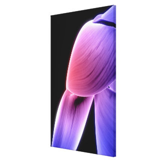 Muscles of the Shoulder Canvas Print