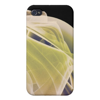 Muscles of the Shoulder Cases For iPhone 4