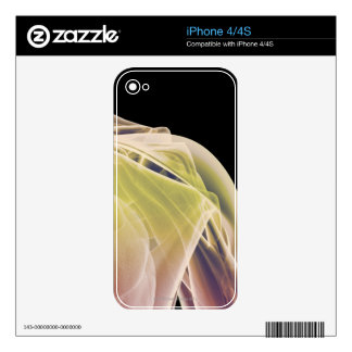 Muscles of the Shoulder iPhone 4 Decals
