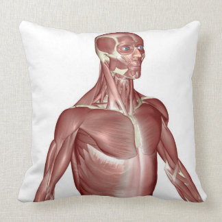 Muscles of the Upper Body 2 Pillow