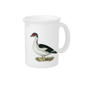 Muscovy Black Pied Duck Drink Pitcher
