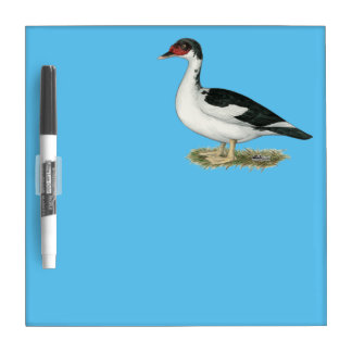 Muscovy Black Pied Duck Dry-Erase Board